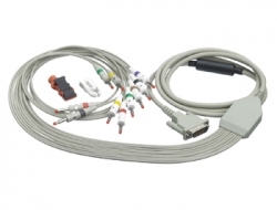 10-Lead Cables